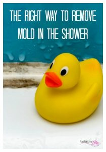how to remove mold in the shower and keep them off. Tips on what to use to remove mold from your shower the easy way #mold #shower #cleaningtips